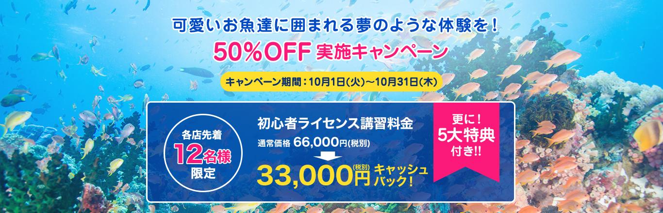 東京でライセンス取得できるおすすめのお店 マレア