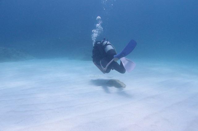 ダイビング前に一読!減圧症の症状、原因、対策を症例からわかりやすく解説