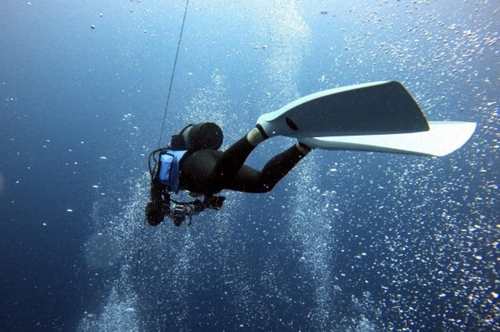 ダイビングの基礎知識を丸ごと紹介!疑問や不安を解消しよう